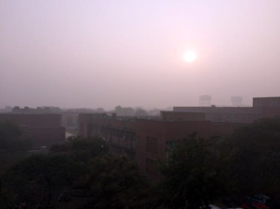 The view from the CHS, JNU
