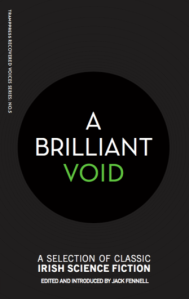 A-Brilliant-Void-Cover-335x531